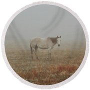 Red Roan In Mist Round Beach Towel