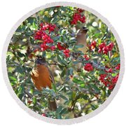 Red Robin And Cedar Waxwing 1 Round Beach Towel