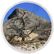 Red Rock Canyon Nv 1 Round Beach Towel