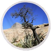 Red Rock Canyon Nv 10 Round Beach Towel