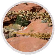 Red Rock Canyon Nv 11 Round Beach Towel