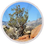 Red Rock Canyon Nv 3 Round Beach Towel