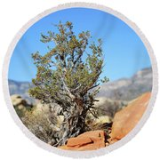 Red Rock Canyon Nv 4 Round Beach Towel