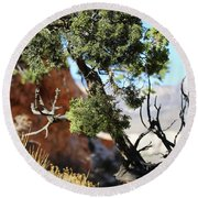 Red Rock Canyon Nv 5 Round Beach Towel