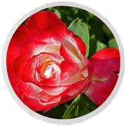 Red Rose And A Sidecar At Pilgrim Place In Claremont-california Round Beach Towel