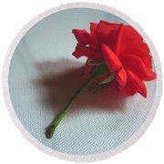 Red Rose Plucked Round Beach Towel