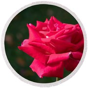 Red Rose Profile Round Beach Towel