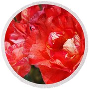 Red Rose With A Whisper Of Yellow  Round Beach Towel