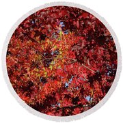 Red Sea Round Beach Towel