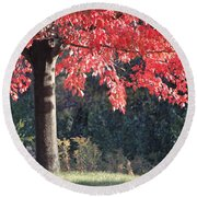 Red Shade Tree Round Beach Towel