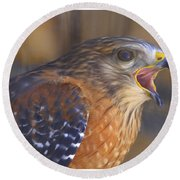 Red Shoulder Hawk Round Beach Towel