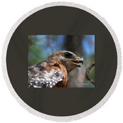 Red Shouldered Hawk - Profile Round Beach Towel