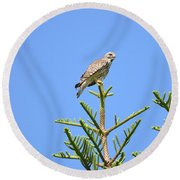 Red-shouldered Perch Round Beach Towel