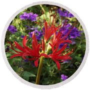 Red Spider Lily Round Beach Towel