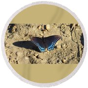 Red Spotted Purple Astyanax Round Beach Towel