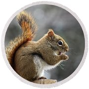 Red Squirrel On Wooden Fence II Round Beach Towel