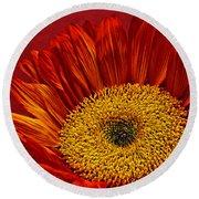 Red Sunflower Viii Round Beach Towel