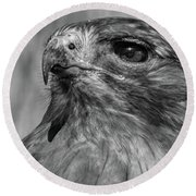 Red-tailed Hawk 2 Round Beach Towel