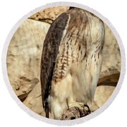 Red-tailed Hawk 4 Round Beach Towel