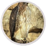 Red-tailed Hawk 5 Round Beach Towel