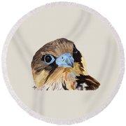 Red-tailed Hawk Portrait Round Beach Towel