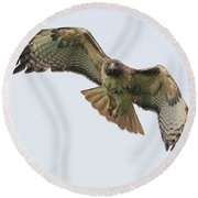 Red Tailed Hawk Finds Its Prey Round Beach Towel