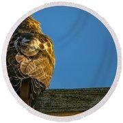 Red Tailed Hawk  IIi  Round Beach Towel