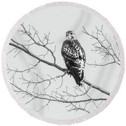 Red-tailed Hawk On Perch Round Beach Towel