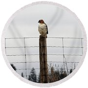 Red Tailed Hawk On The Lookout Round Beach Towel