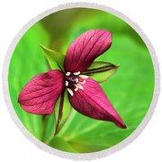 Red Trillium Wildflower Round Beach Towel