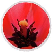 Red Tulip Art Print Inside Tulips Flowers Baslee Troutman Round Beach Towel