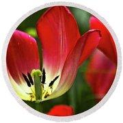 Red Tulips Petals Round Beach Towel