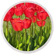 Red Tulips Square Round Beach Towel