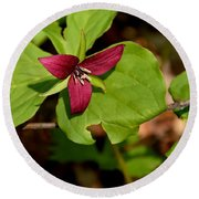 Red Upright Trillium Round Beach Towel