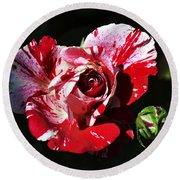 Red Verigated Rose Round Beach Towel