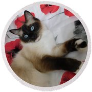 Red White And Ragdoll Kitty Cat Silktapestrykittenstm  Round Beach Towel