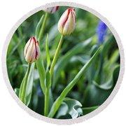 Red White Tulips Round Beach Towel