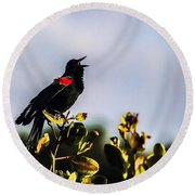Red Wing Black Bird  Round Beach Towel