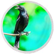 Red Wing Blackbird Perching And Singing Round Beach Towel
