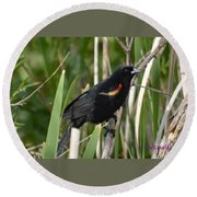 Red-winged Blackbird Round Beach Towel