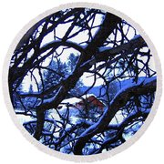 Red Woodshed Round Beach Towel