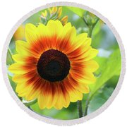 Red Yellow Sunflower Round Beach Towel