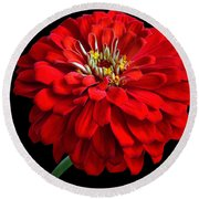 Red Zinnia Round Beach Towel
