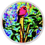 Redbird Dreaming About Why Love Is Always Important Round Beach Towel