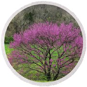 Redbud And Field In Jefferson County Round Beach Towel