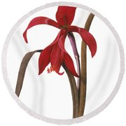 Redout�: St. James Lily Round Beach Towel