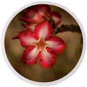 Redwhite Flower Round Beach Towel
