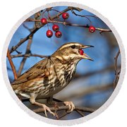 Redwing With Berry Round Beach Towel