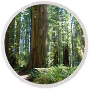 Redwood Trees Forest California Redwoods Baslee Round Beach Towel