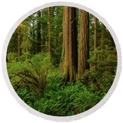 Redwoods And Ferns Round Beach Towel